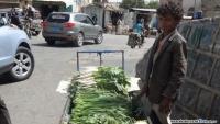 مبيدات اليمن.. خضراوات وفواكه ملوّثة على الموائد