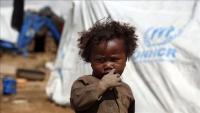 الهجرة الدولية: نزوح 393 ألف يمني منذ بداية 2019