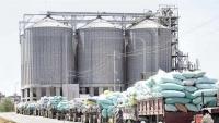 الغذاء العالمي يستأنف عملية طحن القمح في مطاحن البحر الأحمر بالحديدة