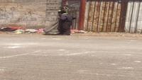 اليمن.. جمع البلاستيك مهنة أنعشتها الحرب