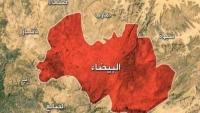 معركة جماعة الحوثي وقبائل البيضاء.. اتجاه واحد