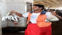 إنتاج الأسماك في اليمن يهوي بأكثر من 65%