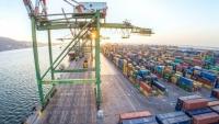 توجيهات بإلغاء تحويل إيرادات ميناء عدن إلى حساب الانتقالي في البنك الأهلي