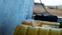"""""""الهجرة الدولية"""" تدعم نحو 5 آلاف نازح بالمياه في محافظة إب"""