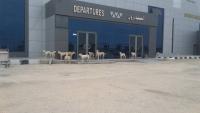 أغلقت القوات السعودية أبوابه أمام اليمنيين.. الكلاب تسرح وتمرح في مطار الغيضة الدولي (شاهد الصورة)