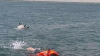 التحالف: دمرنا خمسة ألغام بحرية في البحر الأحمر