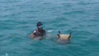 التحالف يقول إنه دمر أربعة ألغام بحرية زرعها الحوثيون في البحر الأحمر