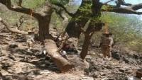 الحكومة تتهم الحوثيين بإعدام مدنيين في تعز
