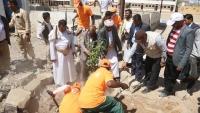 مأرب.. مشروع غرس 800 شجرة بمدارس المحافظة