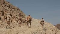 مأرب.. الجيش الوطني يحبط محاولات تقدم للحوثيين في هيلان غربي المحافظة