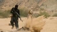 خبير عسكري: علاقة الحوثي بالقاعدة وداعش تعود إلى ما قبل 2014