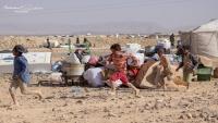 الأمم المتحدة: 90 % من النازحين في مأرب يعيشون في فقر مدقع