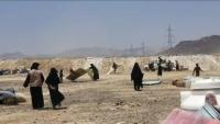 الأمم المتحدة: نزوح أكثر من 2240 أسرة في مأرب منذ مطلع العام الجاري