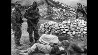 نووي وتعذيب وإبادة.. أبرز جرائم الاستعمار الفرنسي في الجزائر