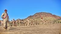 محور أبين ينظم عرضا عسكريا بمناسبة عيد الوحدة 22 مايو