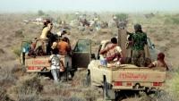ألوية العمالقة تسقط مسيّرة مفخخة للحوثيين بالحديدة